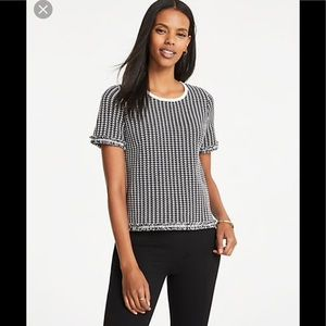 NWT Ann Taylor houndstooth fringed T-shirt sz med